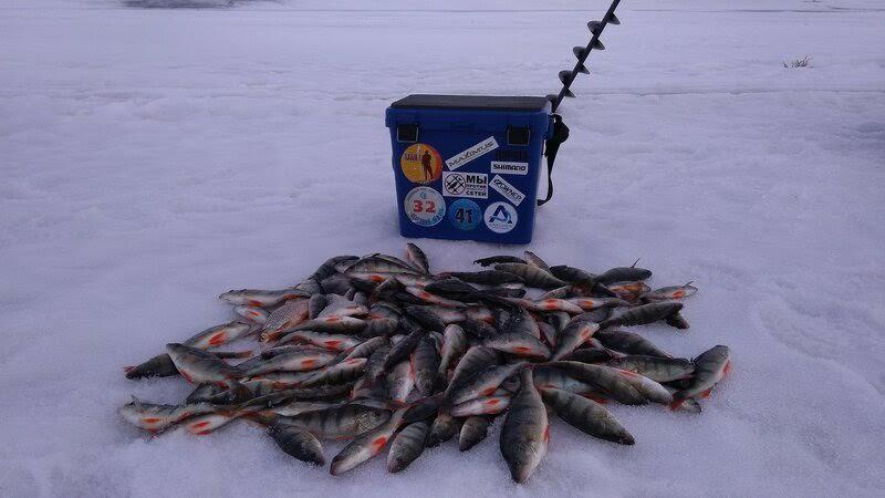 Рыбалка на Братском море