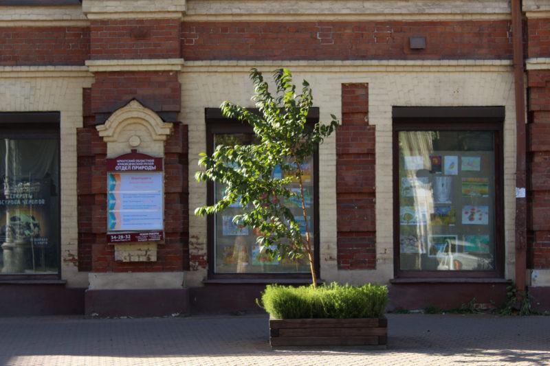 краеведческий музей отдел природы