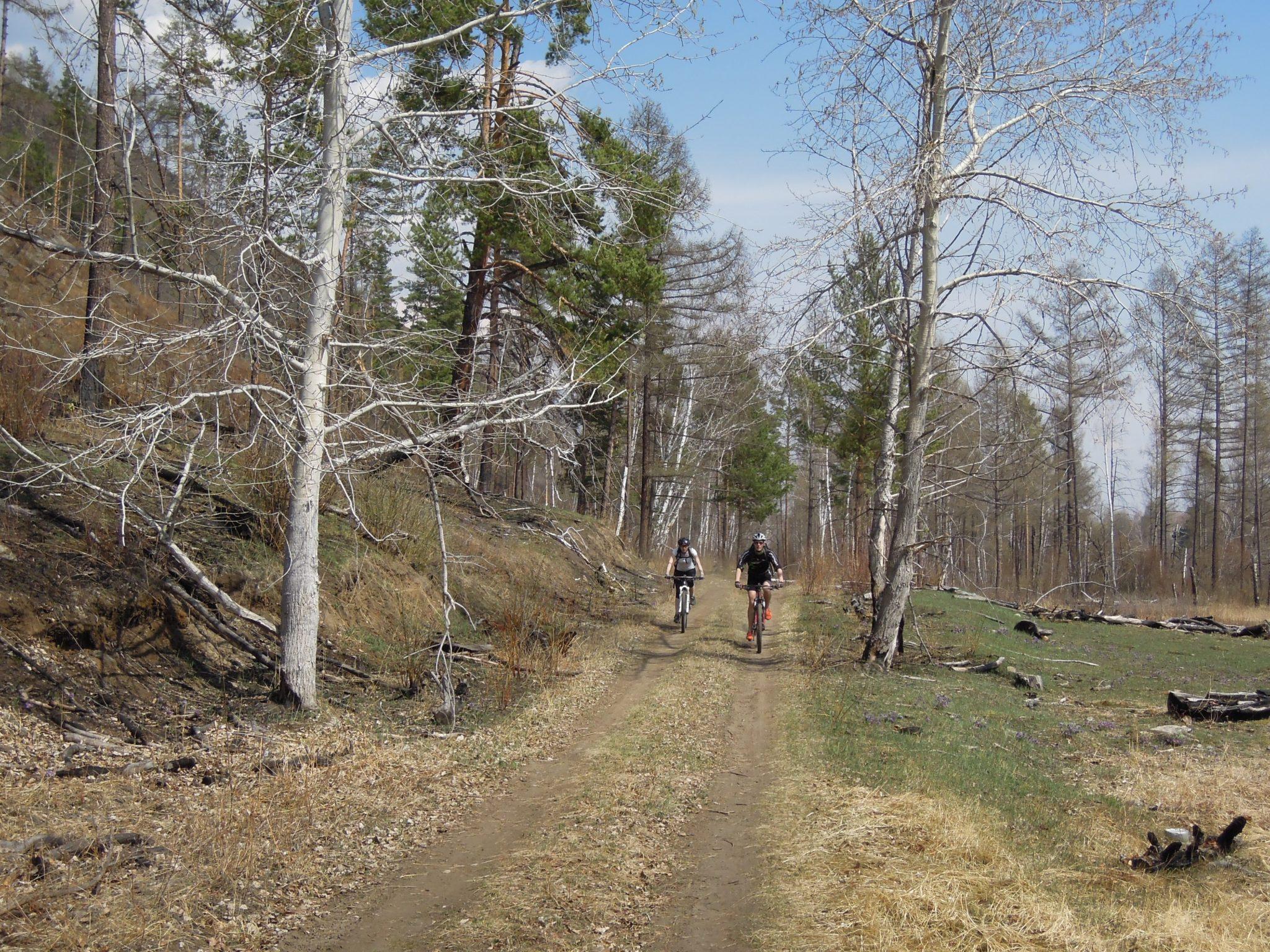ВелоАршан